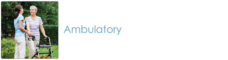 Ambulatory Products Category | Ambulatory Supplies